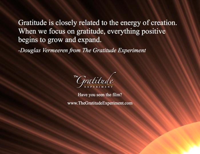 Gratitude Experiment - Douglas Vermeeren