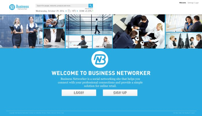 Business Networker landing page preview